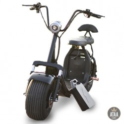 CityCoco removable Battery ATAA CARS SCOOTERS