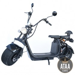 Citycoco ATAA-Enrolled Dual-removable Battery