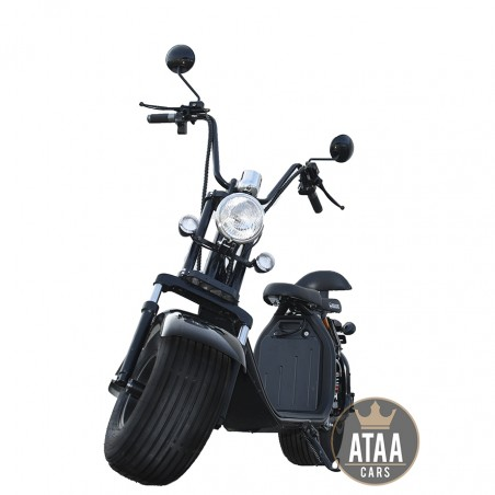 Citycoco ATAA-Enrolled, removable Battery